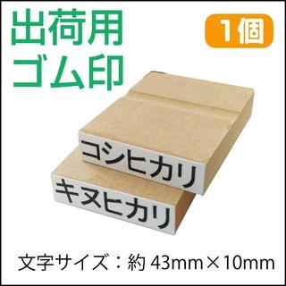 shukka_kome2.jpg