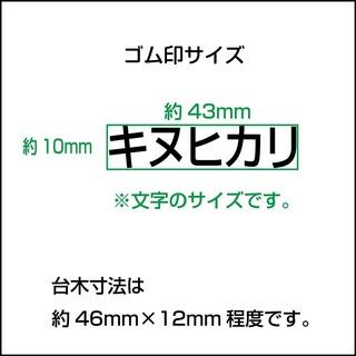shukka_kome_size2.jpg